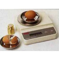 Egg/Shell Weight
