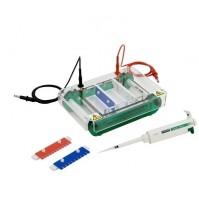 Horizontal Electrophoresis Unit